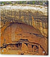 Oak Tree House - Mesa Verde Acrylic Print