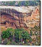 Oak Tree House - Mesa Verde National Park Acrylic Print