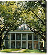 Oak Trees In Front Of A Mansion, Oak Acrylic Print