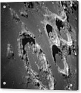 Oblique View Of The Lunar Surface Acrylic Print