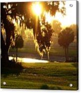 Ocala Sunset Acrylic Print