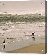 Ocean Edge Acrylic Print