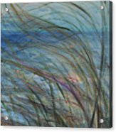 Ocean Grasses In The Wind Acrylic Print