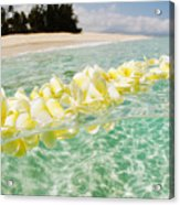 Ocean Lei Acrylic Print
