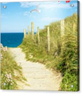 Ocean Path In Cornwall Acrylic Print