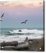 Ocean Shores O1074 Acrylic Print