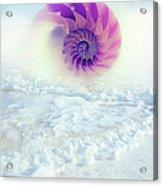 Ocean To Infinity Acrylic Print
