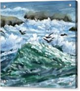 Ocean Waves And Pelicans Acrylic Print