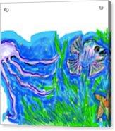 Oceans Wonders  Acrylic Print