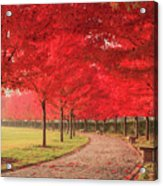 October Dream Acrylic Print