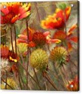 October Flowers 2 Acrylic Print
