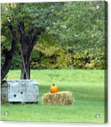 October In Maine Acrylic Print