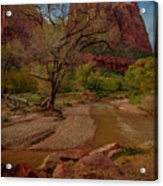 October In Zion Acrylic Print