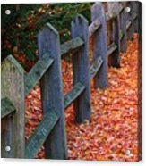 October Light Acrylic Print