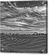 October Patterns Bw Acrylic Print