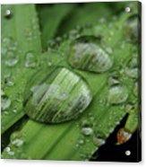 Big Drops Of Rain Acrylic Print
