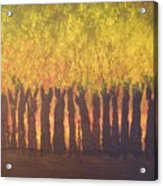 October Trees At Sunset Acrylic Print