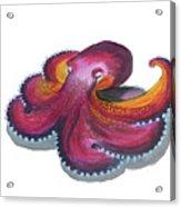 Octopus Dance Acrylic Print