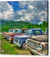 Odd Man Out Fords And Friend  Acrylic Print
