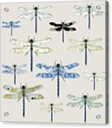 Odonata Acrylic Print