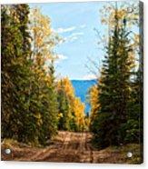 Off The Alaska Highway Acrylic Print