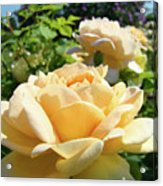 Office Art Prints Rose Peach Orange Rose Flower Baslee Troutman Acrylic Print