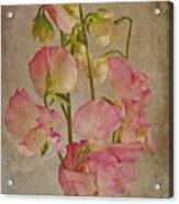 Oh The Fragrance  Acrylic Print