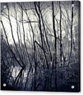 Ohio Metro Pond Acrylic Print