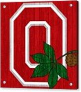 Ohio State Wood Door Acrylic Print