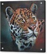 Oil Painting Jaguar Acrylic Print