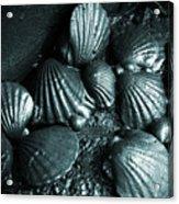 Oil Spill Acrylic Print