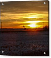 Oil Well Sunset Acrylic Print by Christy Patino