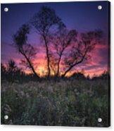 Ojibway Sunset Acrylic Print