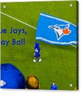 O.k. Blue Jays Let's Play Ball Acrylic Print