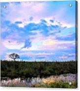 Okavango Sundowners Acrylic Print