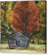 Old Autumn Acrylic Print