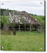 Old Barn Bones  Washington State Acrylic Print
