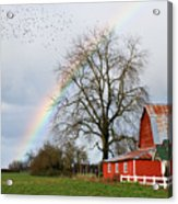 Old Barn Rainbow Acrylic Print