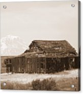 Old Barn With Mount Adams In Sepia Acrylic Print