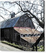 Old Barn With Tree Watercolor Acrylic Print