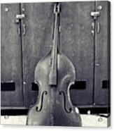 Old Bass Acrylic Print