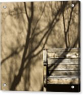 Old Bench Acrylic Print