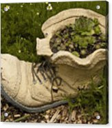 Old Boot Acrylic Print
