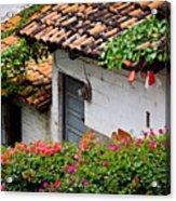 Old Buildings In Puerto Vallarta Mexico Acrylic Print by Elena Elisseeva