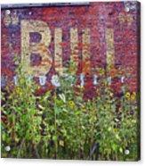Old Bull Durham Sign - Delta Acrylic Print