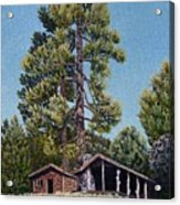 Old Cabin In The Pines Acrylic Print