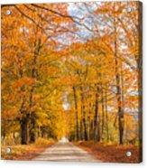 Old Coach Road Autumn Acrylic Print