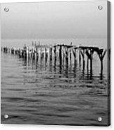 Old Dock  Acrylic Print