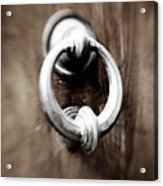 old Door Knocker Acrylic Print