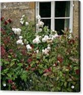 Old English Garden Acrylic Print